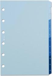 Tabkaarten Succes standard 1 t/m 12 blauw XT200.