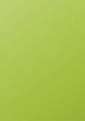 Gekleurd papier Pollen A4 120 grams grasgroen 50 vel.