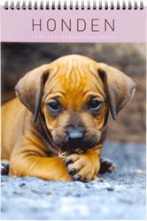Verjaardagskalender Ryam Luxe 'Honden' 22.5 x 33cm.