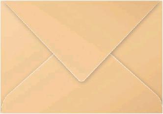 Gekleurde envelop Pollen C5 162x229mm 120 grams mokkabruin 20 stuks.
