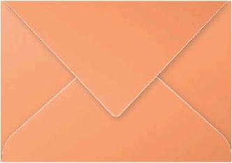Gekleurde envelop Pollen C5 162x229mm 120 grams oranje 20 stuks.