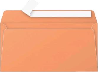 Gekleurde envelop Pollen EA5/6 110x220mm 120 grams zelfklevend oranje 20 stuks.
