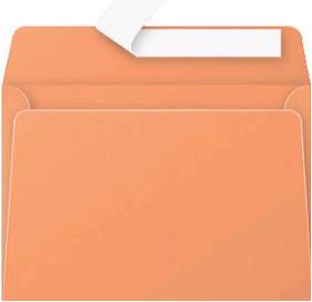 Gekleurde envelop Pollen C6 114x162mm 120 grams zelfklevend oranje 20 stuks.