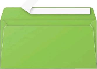 Gekleurde envelop Pollen EA5/6 110x220mm 120 grams zelfklevend grasgroen 20 stuks.