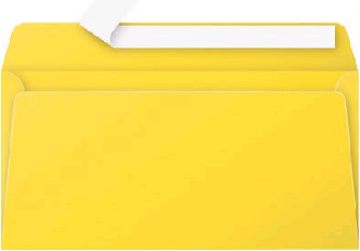 Gekleurde envelop Pollen EA5/6 110x220mm 120 grams zelfklevend zonnegeel 20 stuks.