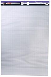 Flipoverblok 65x100 cm eenzijdig blanco/geruit 2 bloks van 50 vel.