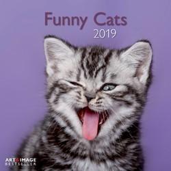 Kalender 2019 teNeues funny cats.